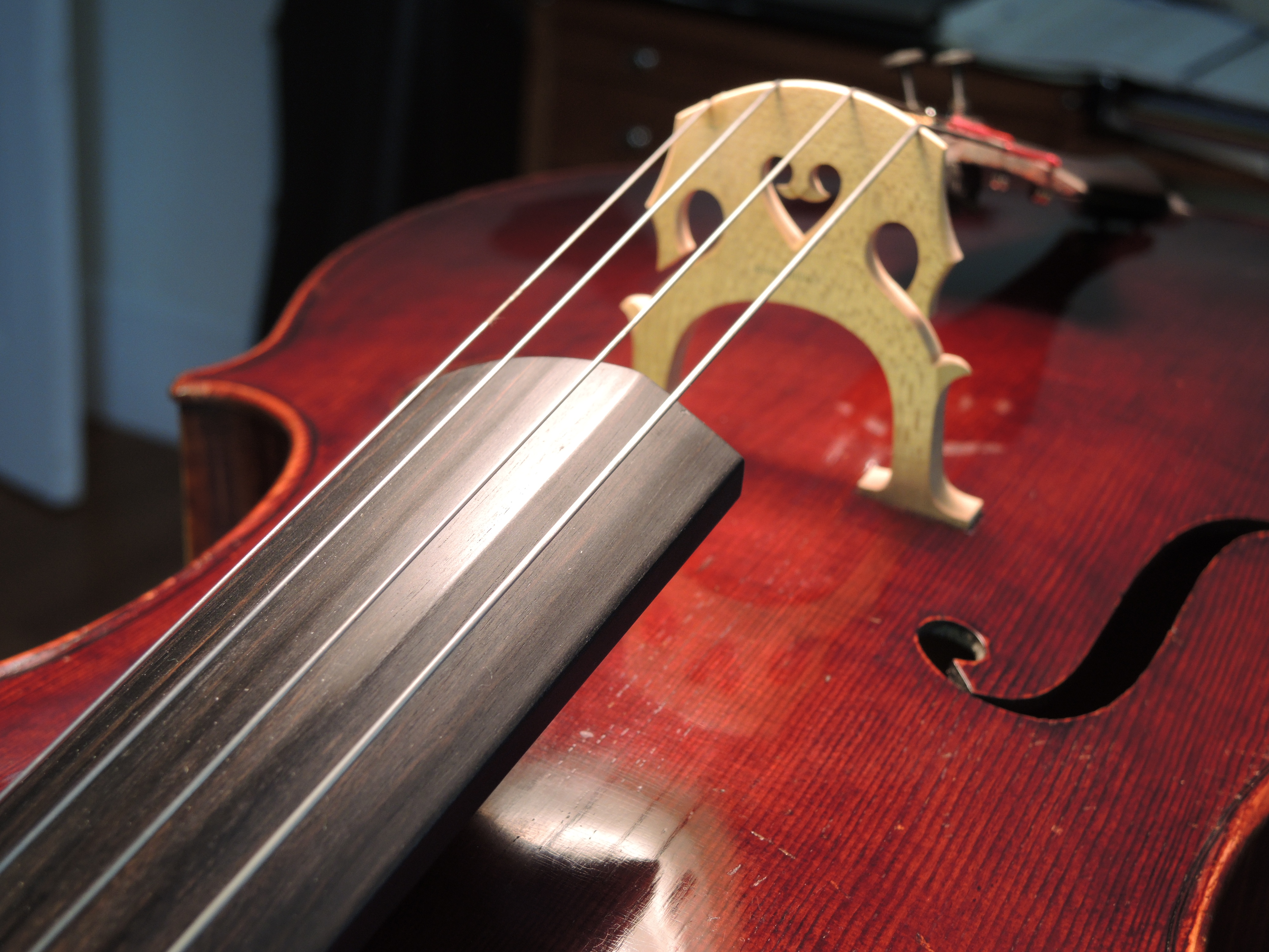 Old wood minerale interior of violin - Dscn0645